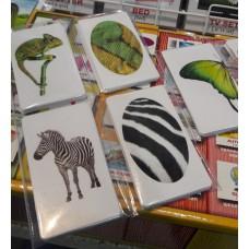 Карточки Домана на 1,5 года какие купить