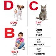 Карточки Домана Alphabet мини 26 Английский украинский