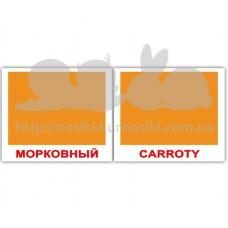 Карточки Домана Цвета Сolors мини 40 русск англ