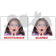 Карточки Домана Эмоции Emotions мини 40 русск англ