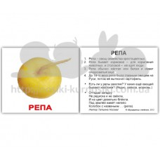 Карточки Домана Овощи с фактами мини 40 русск