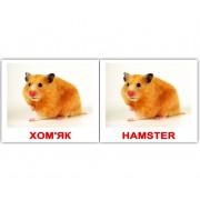 Карточки Домана Свійські тварини Domestic animals мини 40 Укр Англ