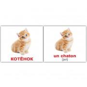 Карточки Домана Домашние животные русск французский мини 20 шт