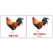 Карточки Домана Домашние животные Haustiere русск немецкий мини 20 шт