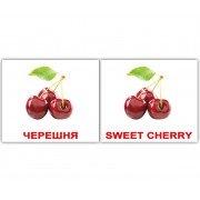 Карточки Домана Фрукты Fruit мини 40 русск англ