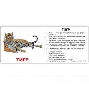 Карточки Домана Дикие животные с фактами на бел фоне мини 40 русск