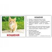 Карточки Домана Свійські тварини з фактами мини 40 Укр