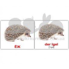 Карточки Домана Дикие животные Wildtiere русск немецкий мини 20 шт
