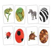 Карточки Домана Животное и фрагмент