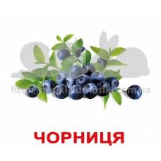 Карточки Домана Ягоды с фактами Укр ламинированные