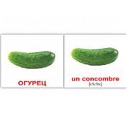 Мини карточки Домана Овощи Фрукты русский французские