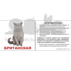Мини карточки Домана Породы кошек с фактами
