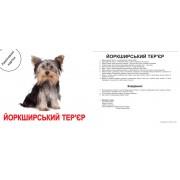 Карточки Домана Породи собак ламинированные