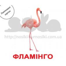 Карточки Домана Птахи ламинированные