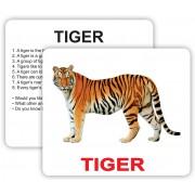 Карточки Домана дикие животные с фактами на английском языке