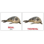 Карточки Домана Водные животные мини 40 шт русск-англ