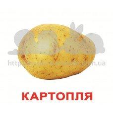 Комплект карточек Овочі українскою мовою Вундеркинд с пеленок