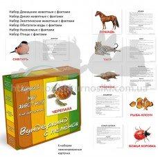 Мир животных ламинированные карточки Домана