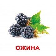 Комплект карточек Ягоди українскою мовою Вундеркинд с пеленок