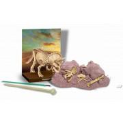 Набор для творчества Скелет трицератопса